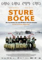 Sture Böcke (Hrútar)